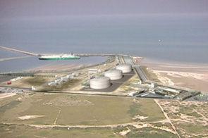 Terminal méthanier de Dunkerque, Biotope.