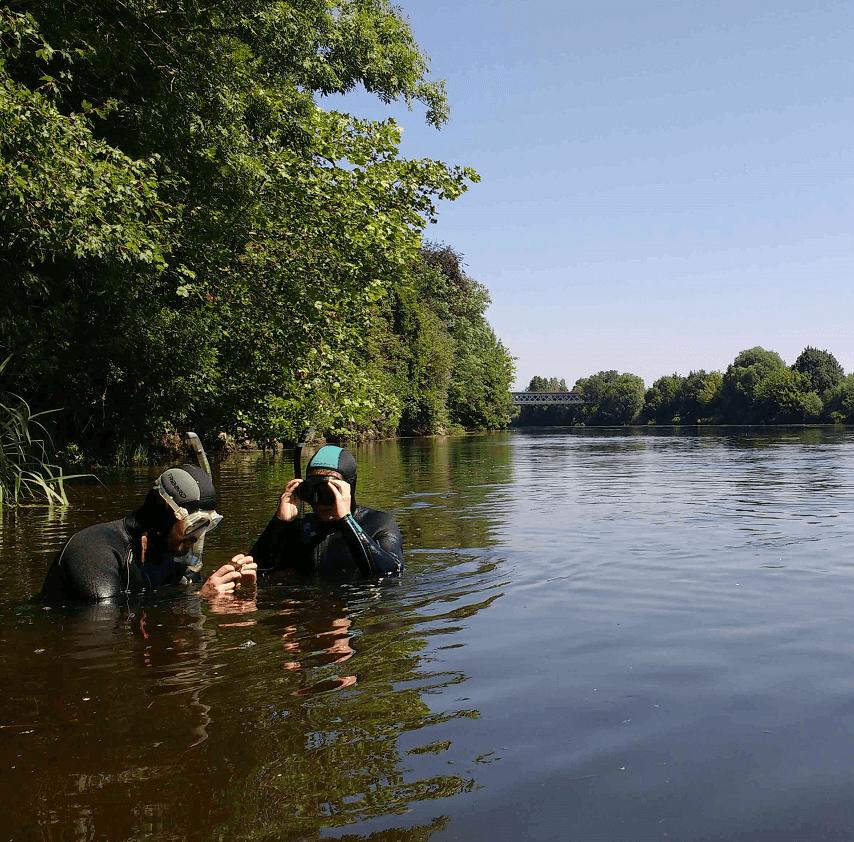 Mission restauration poissons