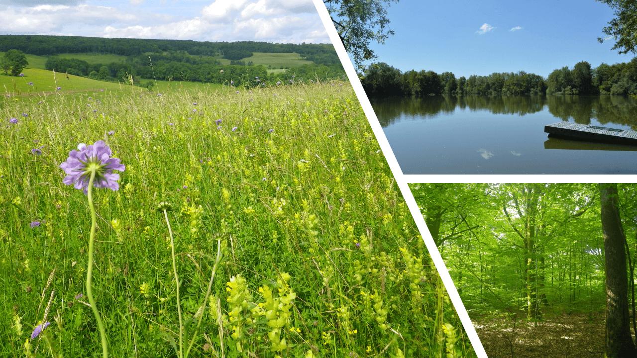 Biotope Bourgogne Franche Comté
