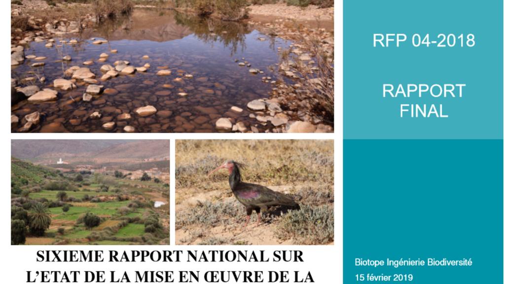 sixi u00e8me rapport national sur la biodiversit u00e9  rapport de
