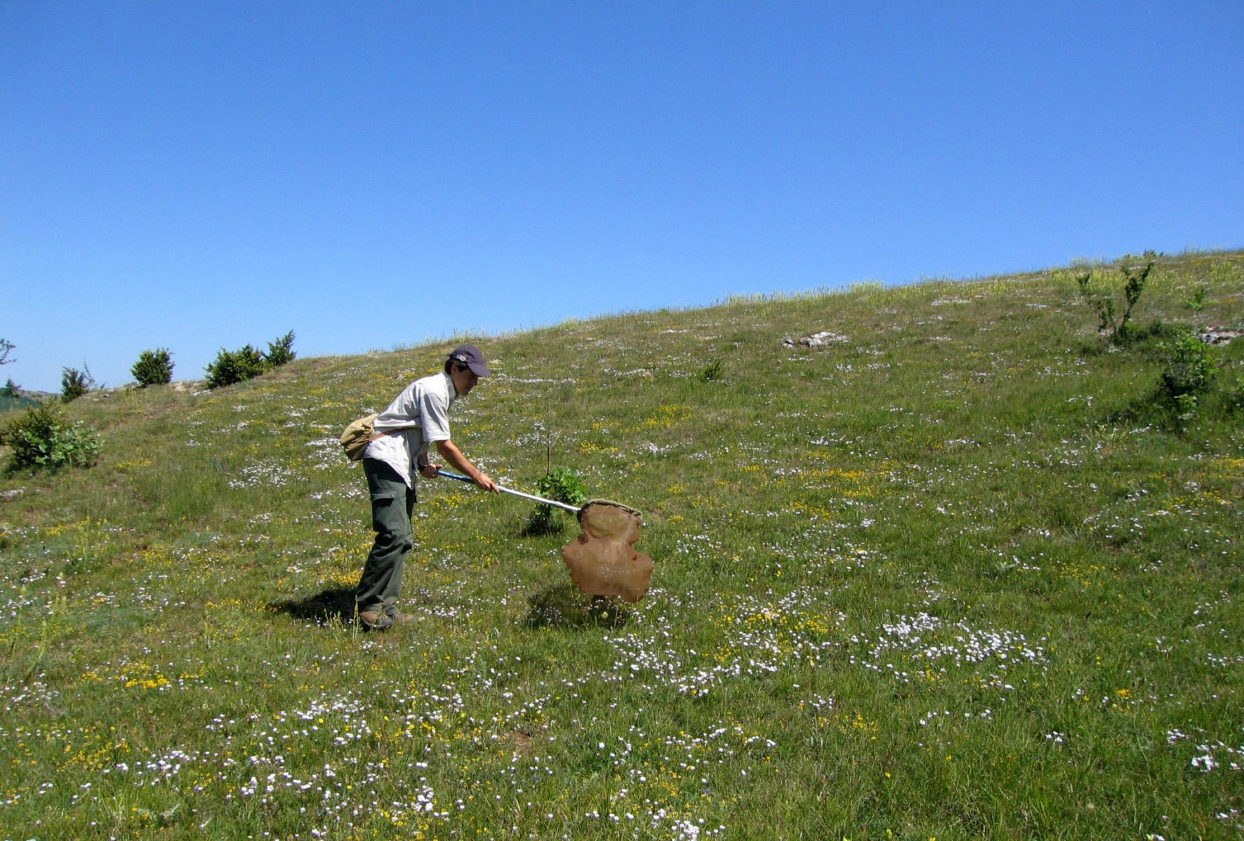 Fondation biodiversité