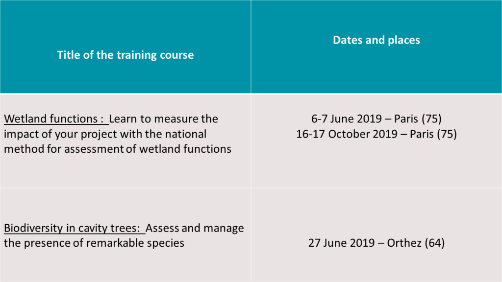Environment training