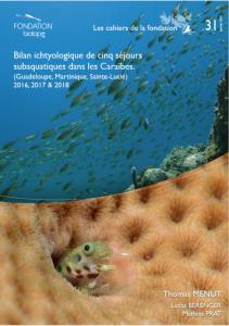 Bilan ichtyologique de cinq séjours subaquatiques dans les Caraïbes